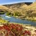 Oregon River